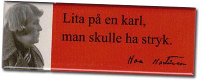 Magnet_Lita_pa_en_karl